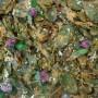 tempura de feuilles de sauge