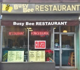 busy bee featuring